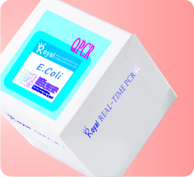 e-coli test kits
